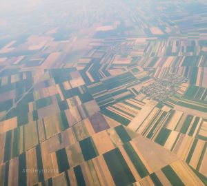 Airplane view of fields