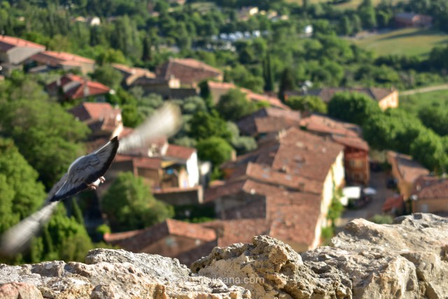 Moustier Saint Marie, South France | top view upon city with flying bird