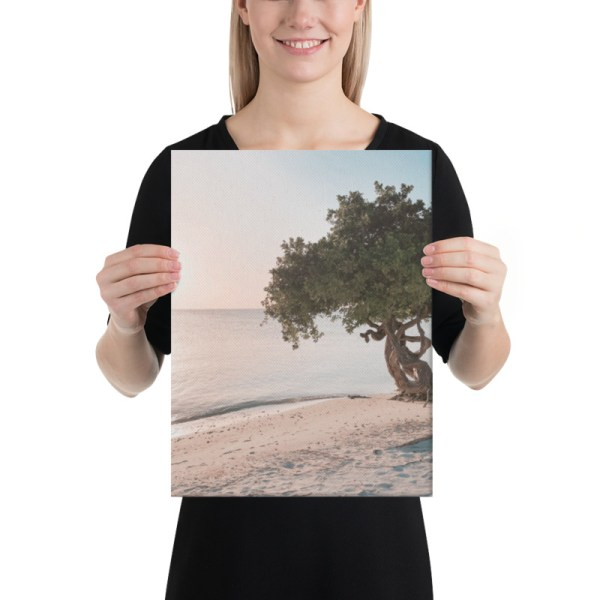 smieyioana.com | Caribbean Divi Tree Printed Canvas - Sample Size