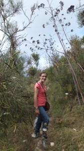 Mon chemin planté d'herbes folles