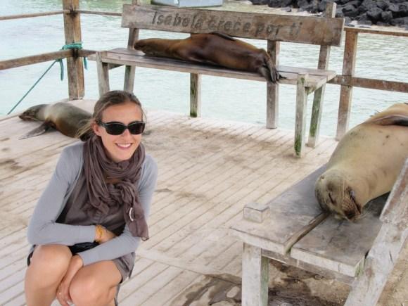 Les otaries se la coulent douce à Puerto Villamil