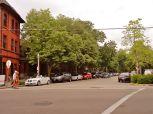 Tree shaded streets
