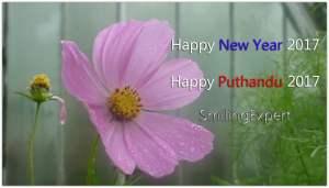 Puthandu 2017 Tamil New Year
