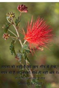 Dr. APJ Abdul Kalam hindi quotes