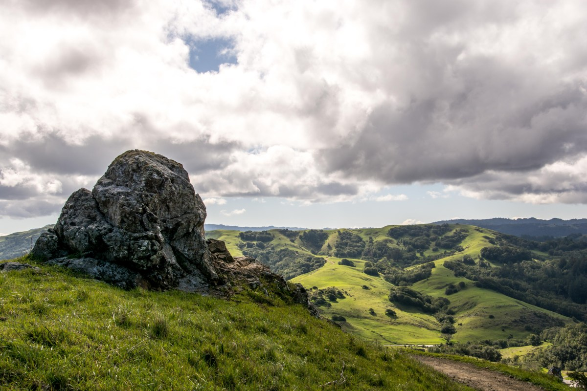 Big Rock Ridge Trail - Marin County | Smiling in Sonoma