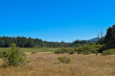 Annadel State Park | Smiling In Sonoma