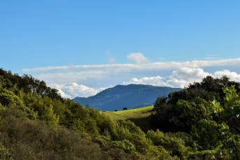 Waterfall and Brushy Peaks | Smiling in Sonoma