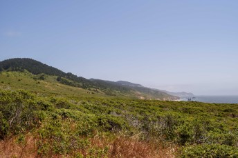 Point Reyes | Smiling in Sonoma