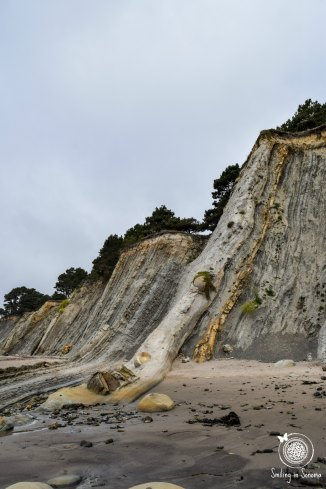 The crazy rock formations happening on the cliffs