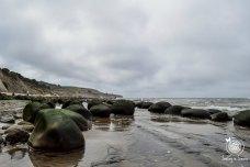 It was super low tide