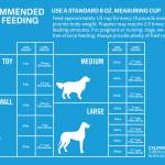 Staffordshire Bull Terrier Dietary Requirements What To Feed Your Staffy