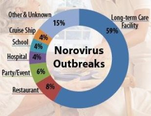 Health On The High Seas By Gramps Travel Smith County Insider - Norovirus outbreak cruise ship
