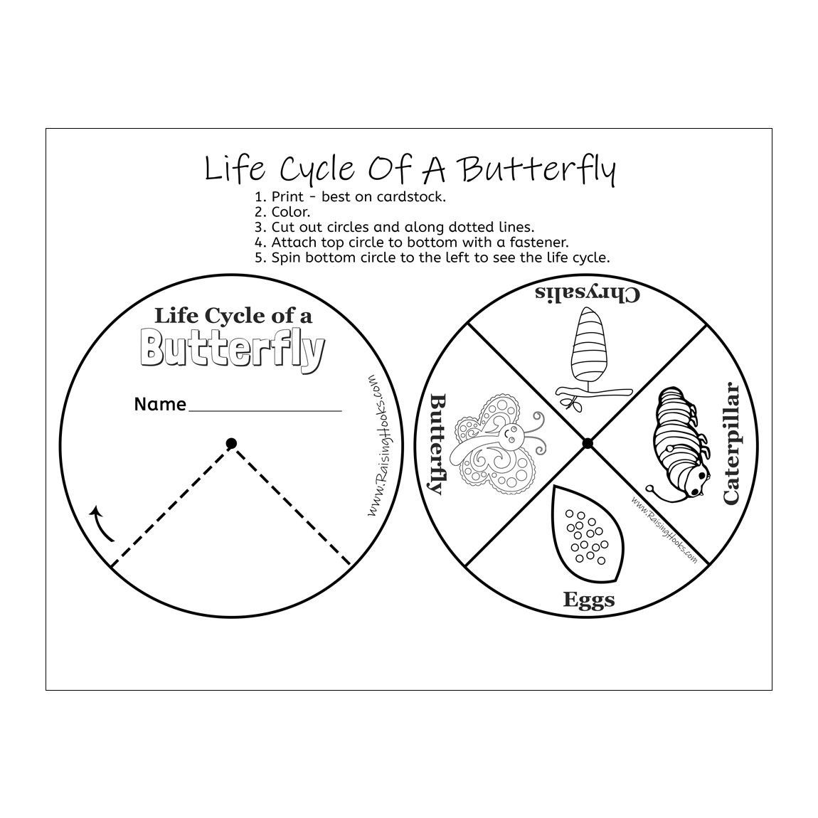 30 Butterfly Life Cycle Worksheet