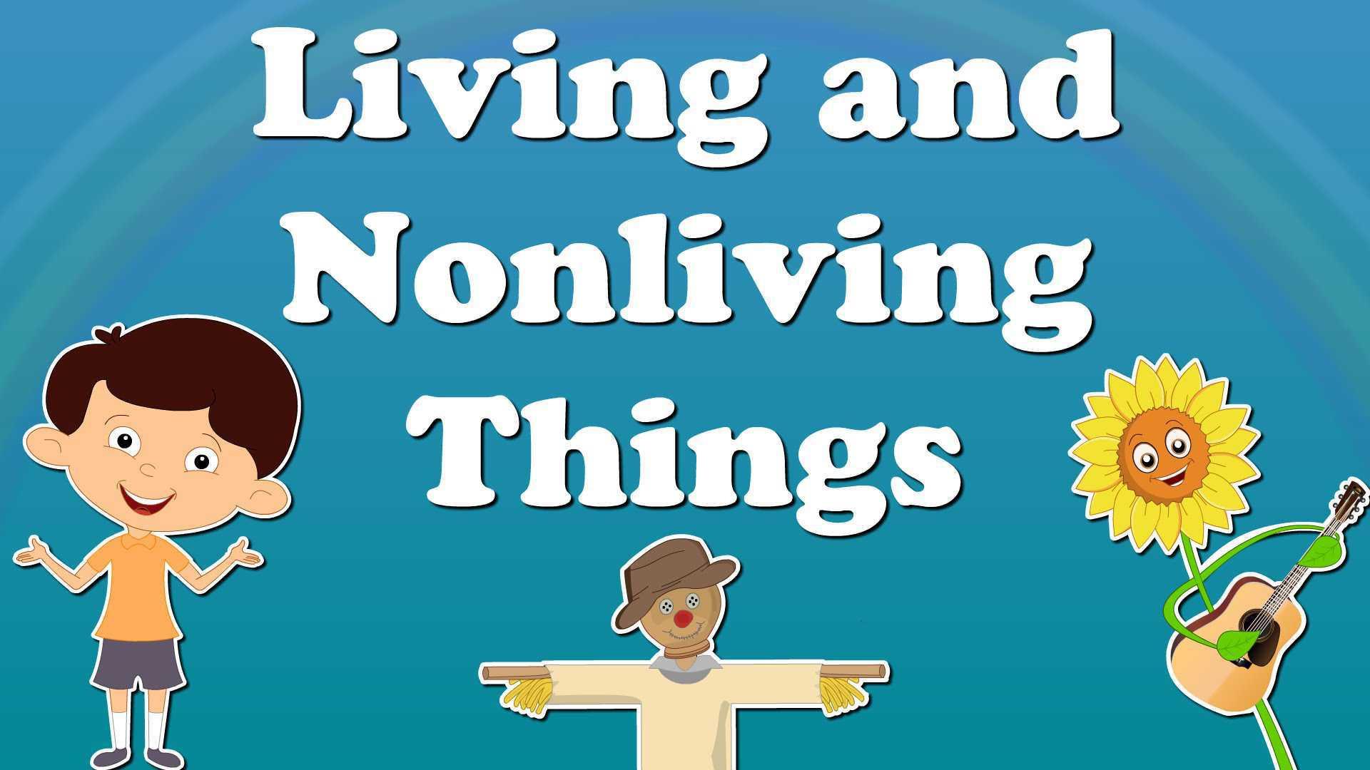 30 Characteristics Of Life Worksheet Answers