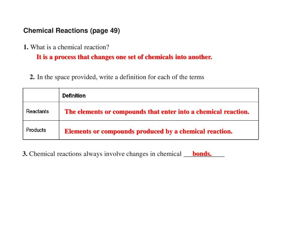30 Enzymes Worksheet Answer Key