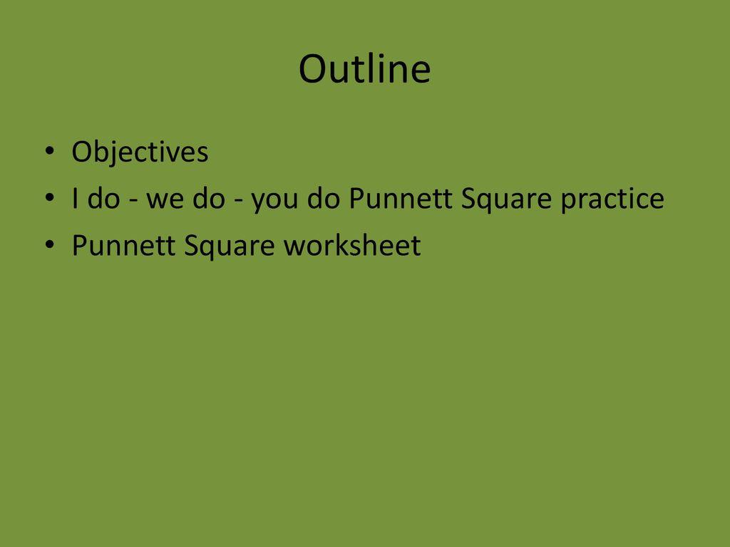 30 Punnett Square Practice Worksheet