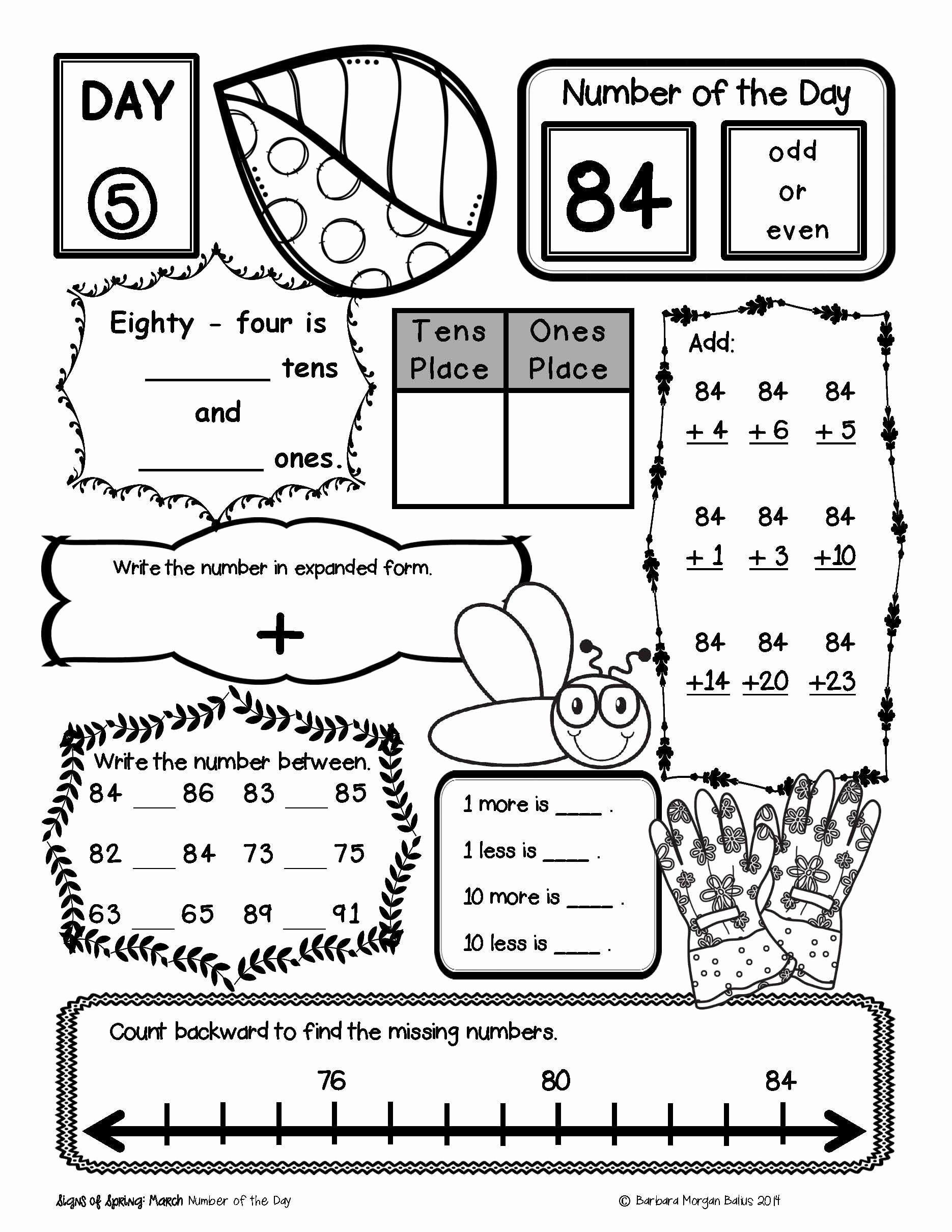30 Parts Of A Book Worksheet