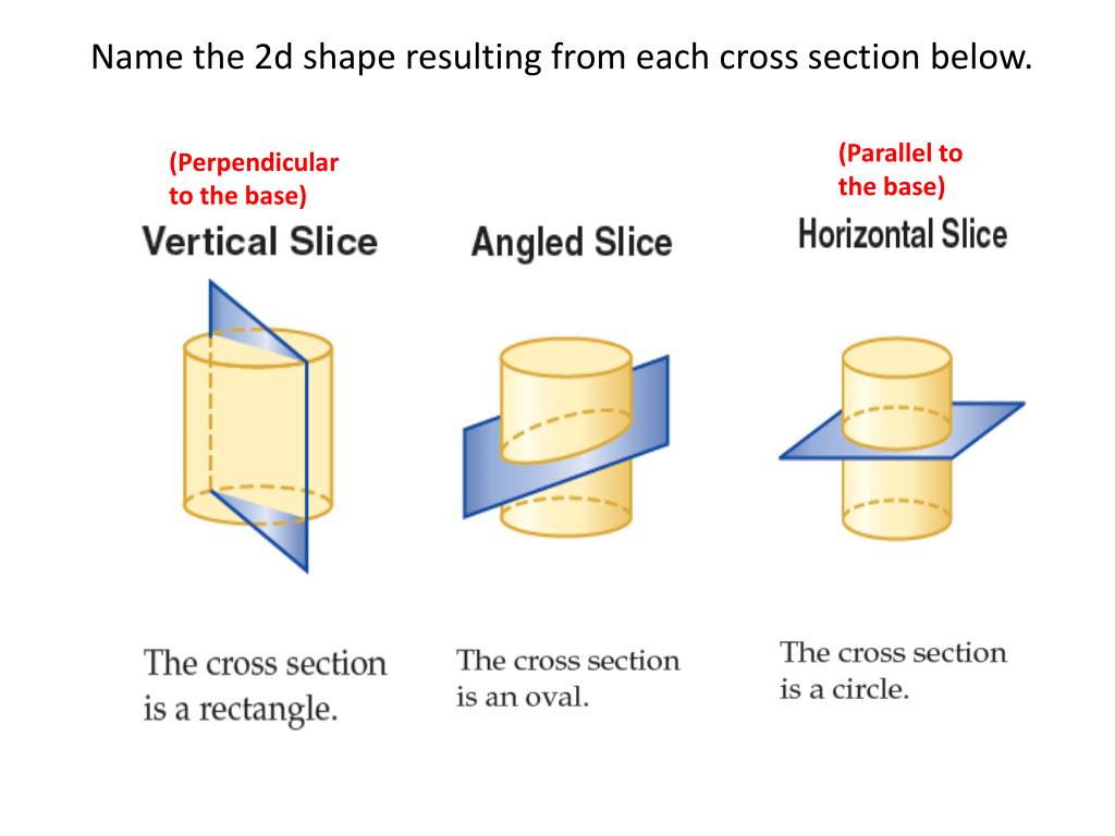 30 Cross Section Worksheet 7th Grade
