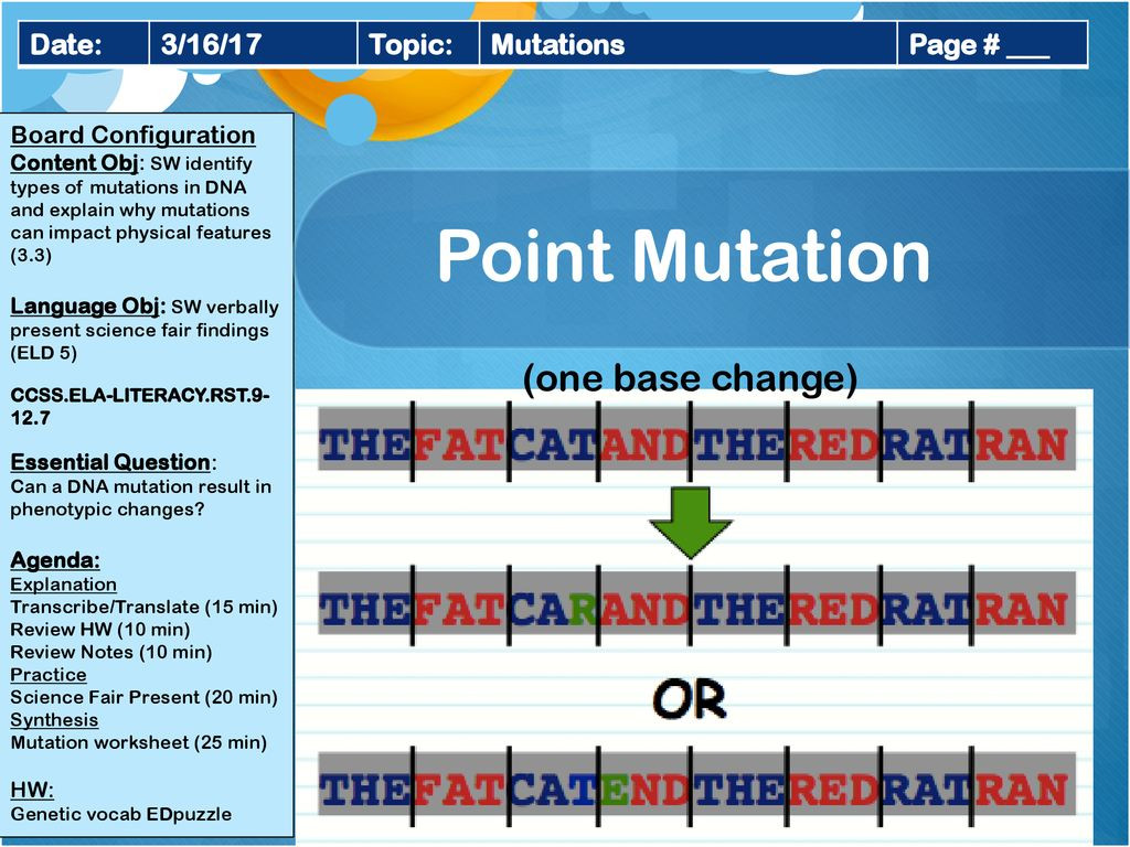 30 Dna Mutations Practice Worksheet Answers