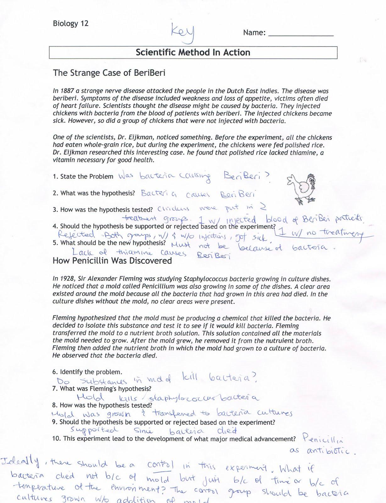 30 Experimental Design Worksheet Scientific Method