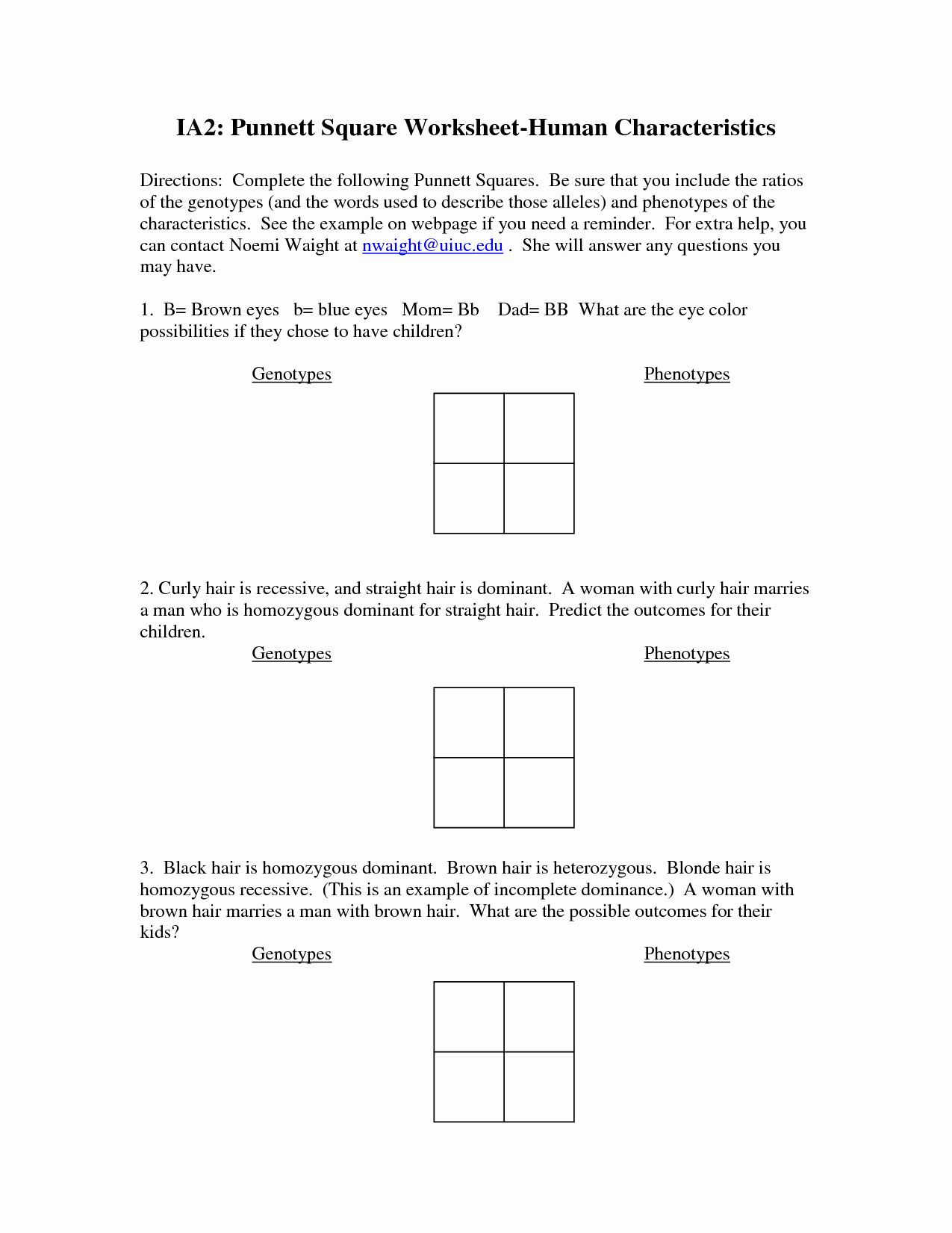30 Genetics Problems Worksheet Answers