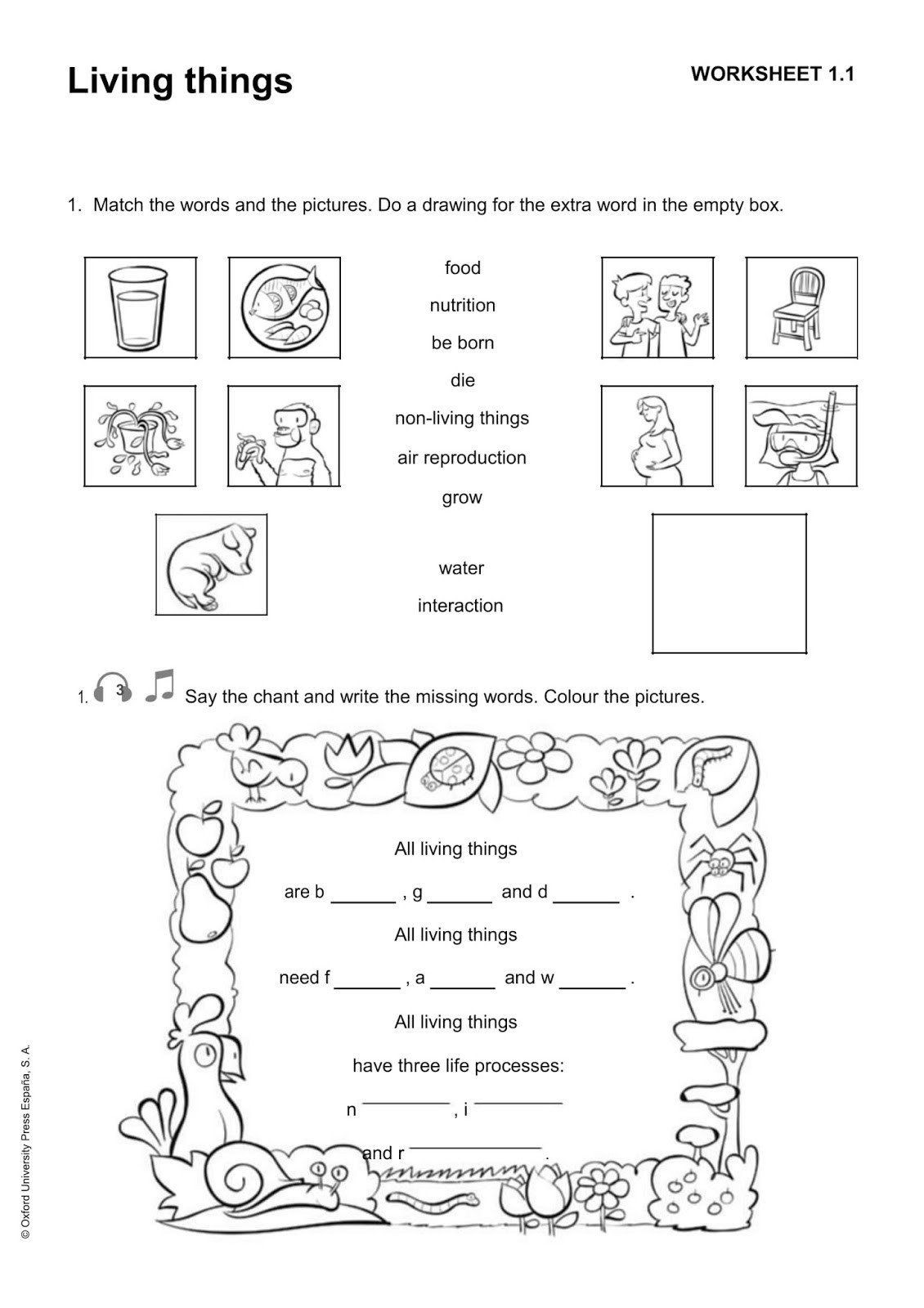 30 Plant Reproduction Worksheet Answers