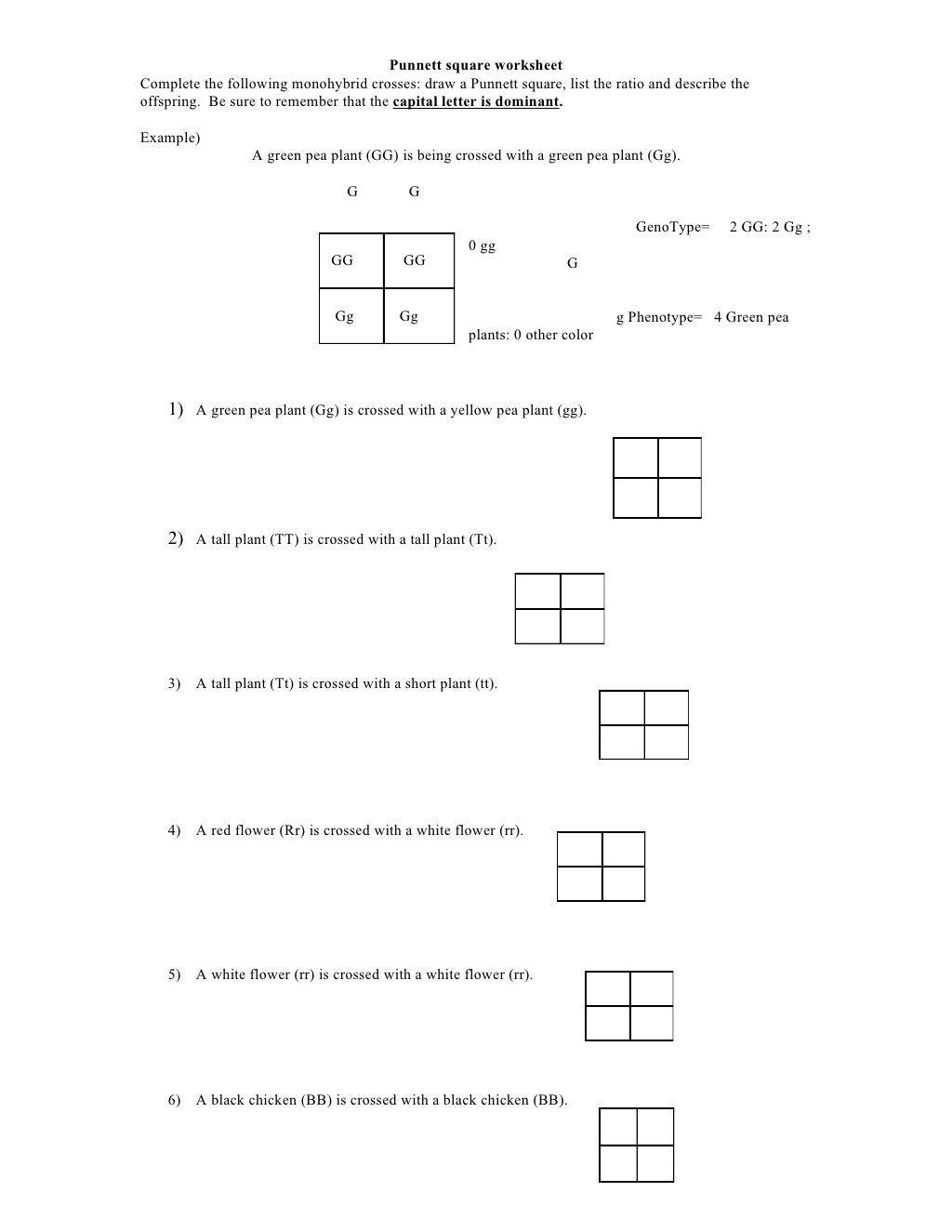 30 Punnett Square Practice Problems Worksheet