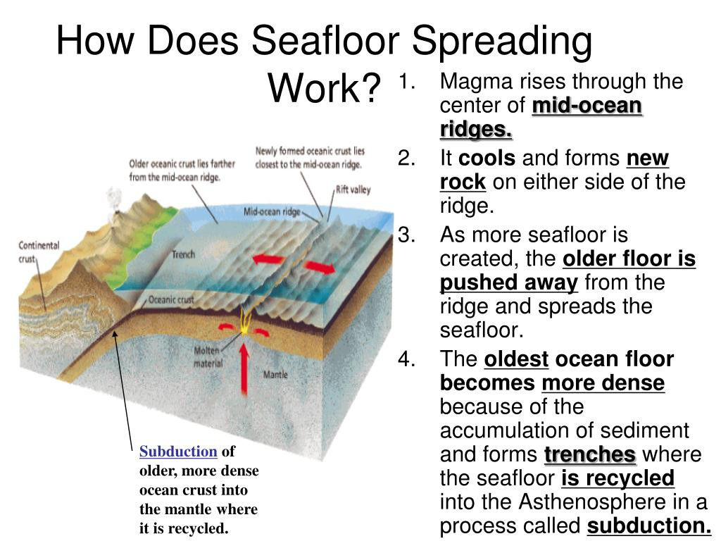 30 Sea Floor Spreading Worksheet Answer