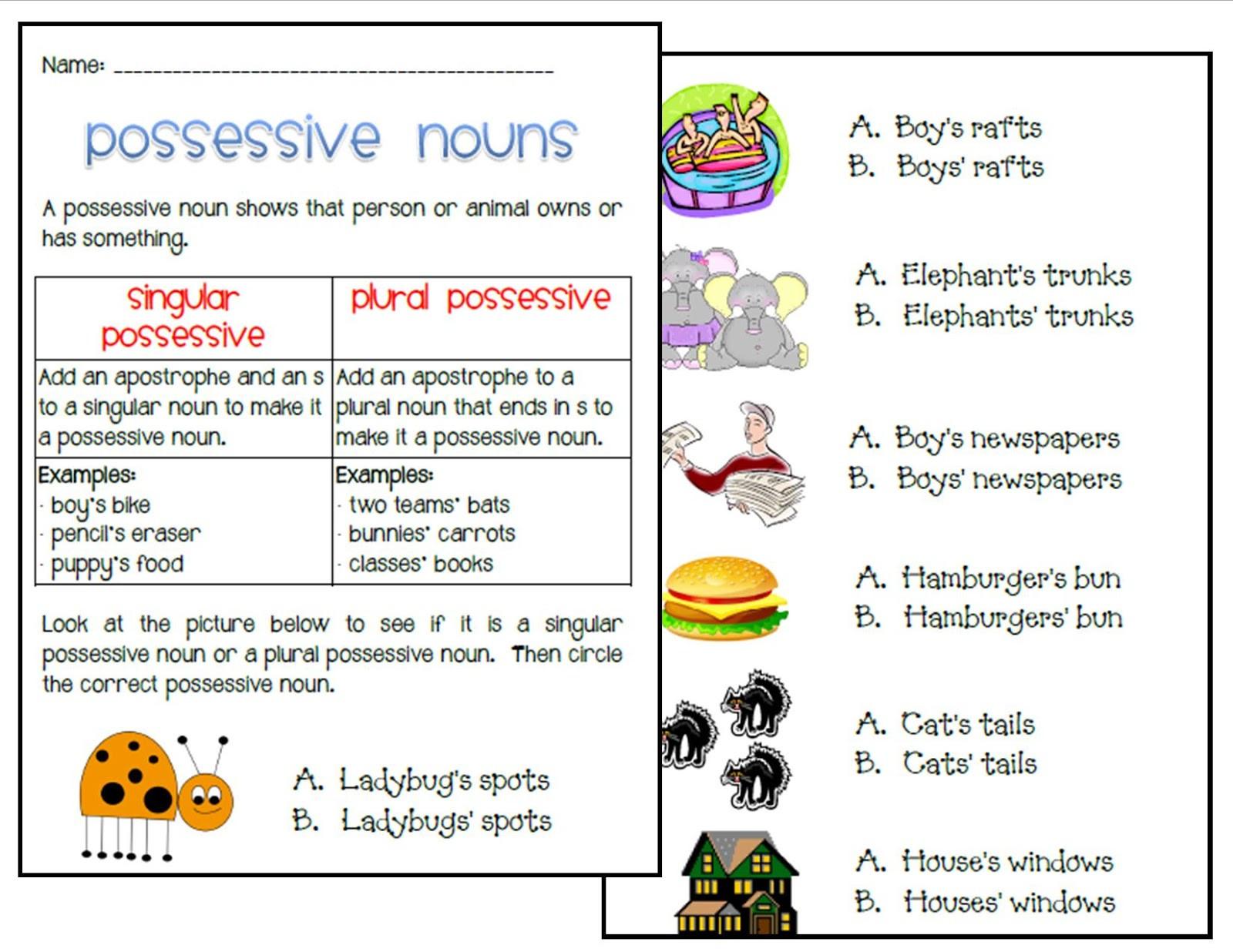 30 Singular Possessive Nouns Worksheet