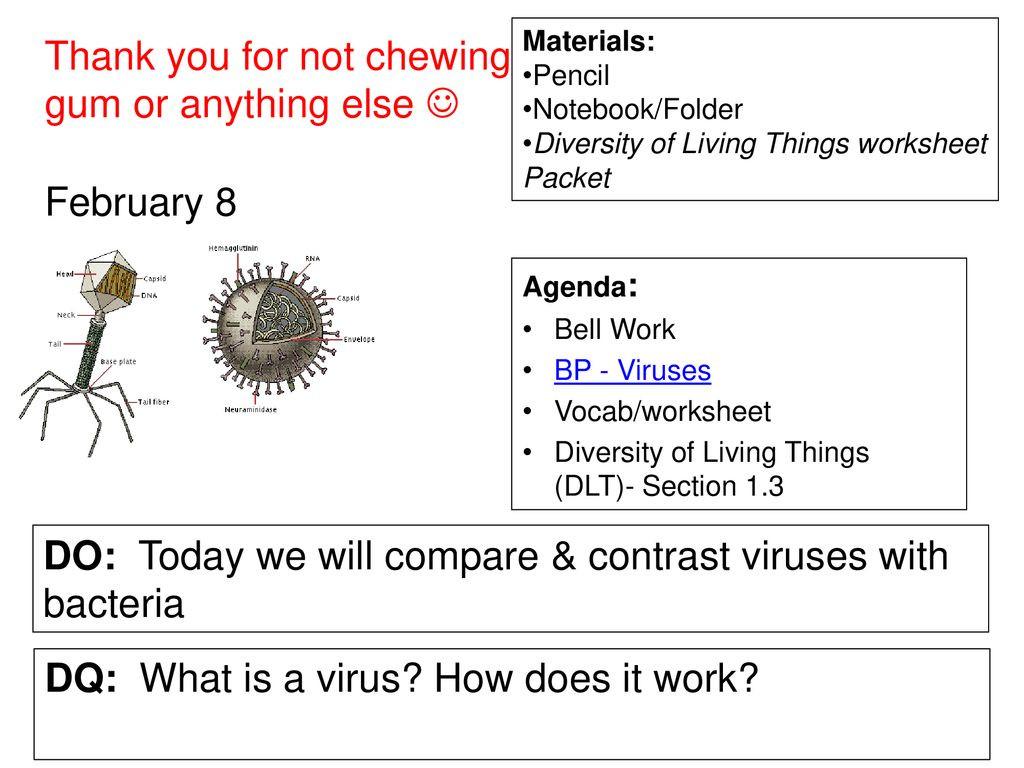 30 Viruses And Bacteria Worksheet