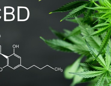 molecular formula for CBD and marijuana plant