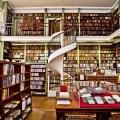 Shelfs with study books