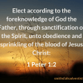 Illustration - background - field - text - Elect according to God in 1 Peter 1 verse 2