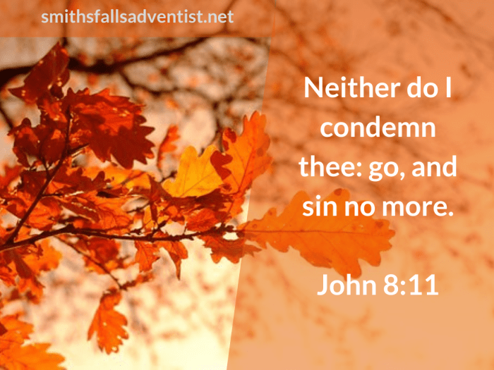 Illustration-background-autumn-trees-text-Neither do I in John 8 verse 11