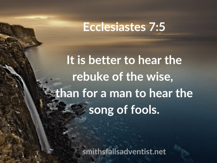 Illustration-background-waterfall-title-Rebuke of the wise in Ecclesiastes 7 verse 5-text-Bible verse