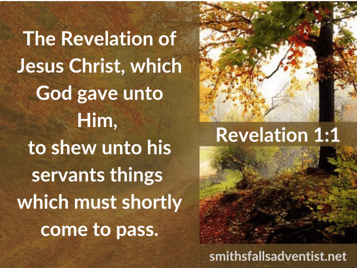 Illustration-background-colorful trees-autumn-title-The Revelation of Christ in Revelation 1 verse 1-text-Bible verse