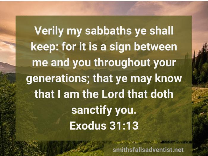 Illustration-landscape-green fields-title-My sabbaths ye shall keep in Exodus 31 verse 13-text-Bible verse