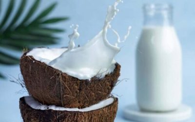 NOT ALL CANNED COCONUT MILK IS EQUAL
