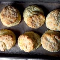 my favorite buttermilk biscuits