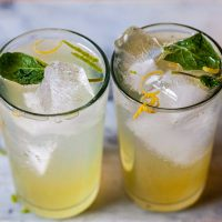 lemon and lime mintade