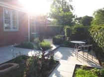 Morgensol i haven, sommer 2018