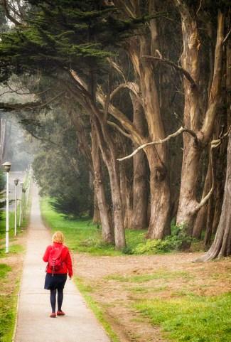 03_lovers_lane_early_fog_SMKanePhoto