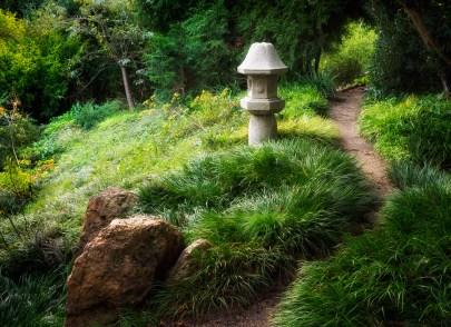 San Francisco Botanical Garden, Golden Gate Park.