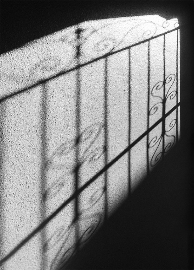 shadowseason_smkanephotos