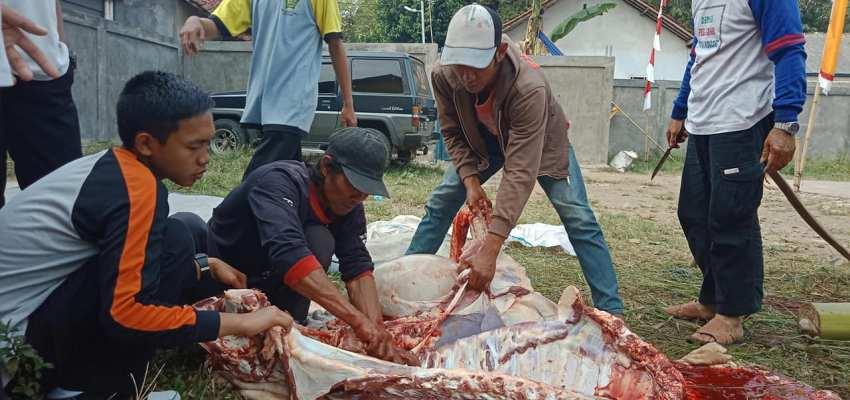 Qurban SMK Permata 1&2 Kota Bogor