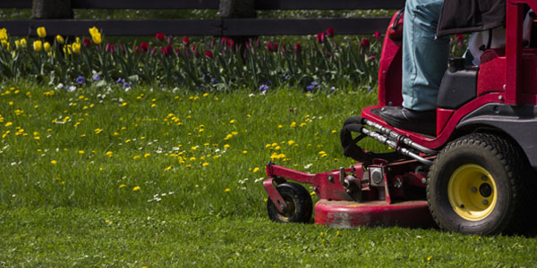 commercial lawn care professional at work cutting grass