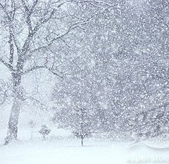 Avertizare meteo! Vine iarna la Satu Mare