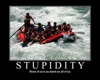 Stupidity-picture