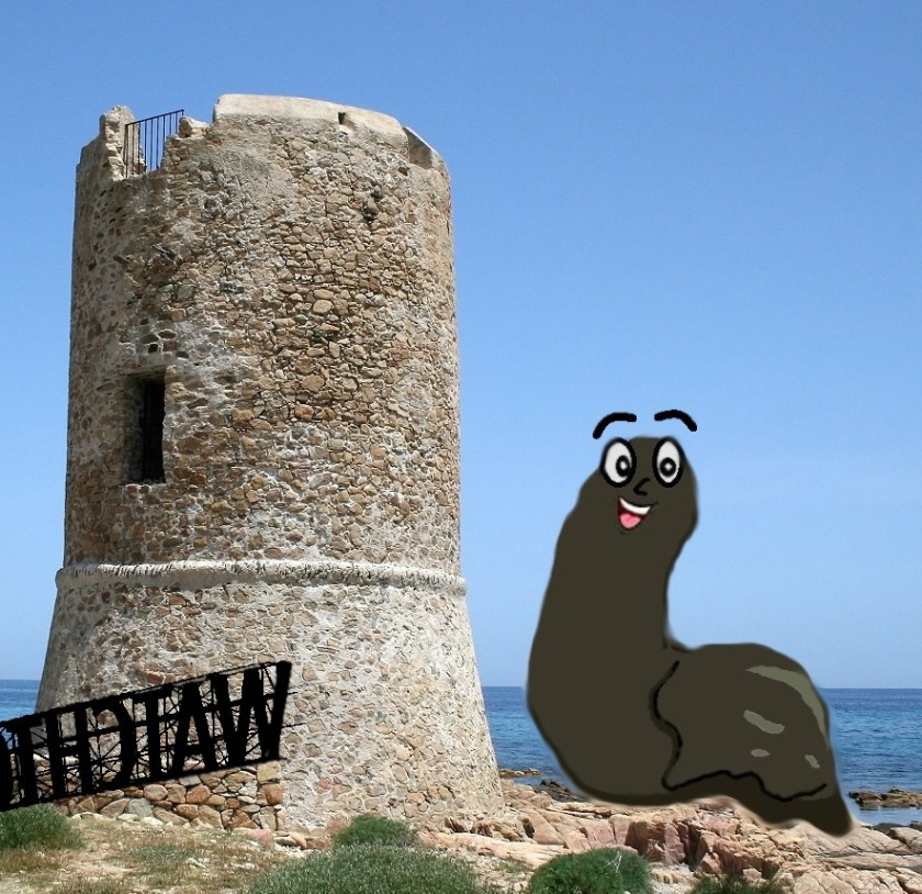 Watchtower destroyed by leech