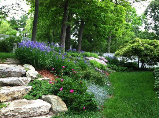 A Steep Slope Transformed Sally Muspratt Landscape Design